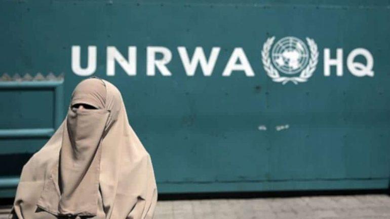 unrwa agenzia onu per i palestinesi